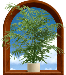 Decorative arch with palm plant